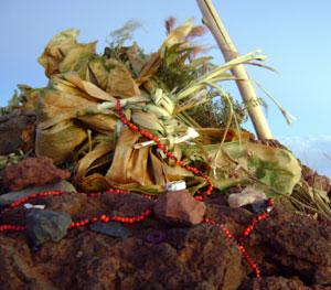 マウナケア山頂のヘイアウ ハワイアンパームス